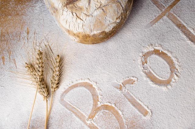 Unterschied Mehrkorn und Vollkorn Brot
