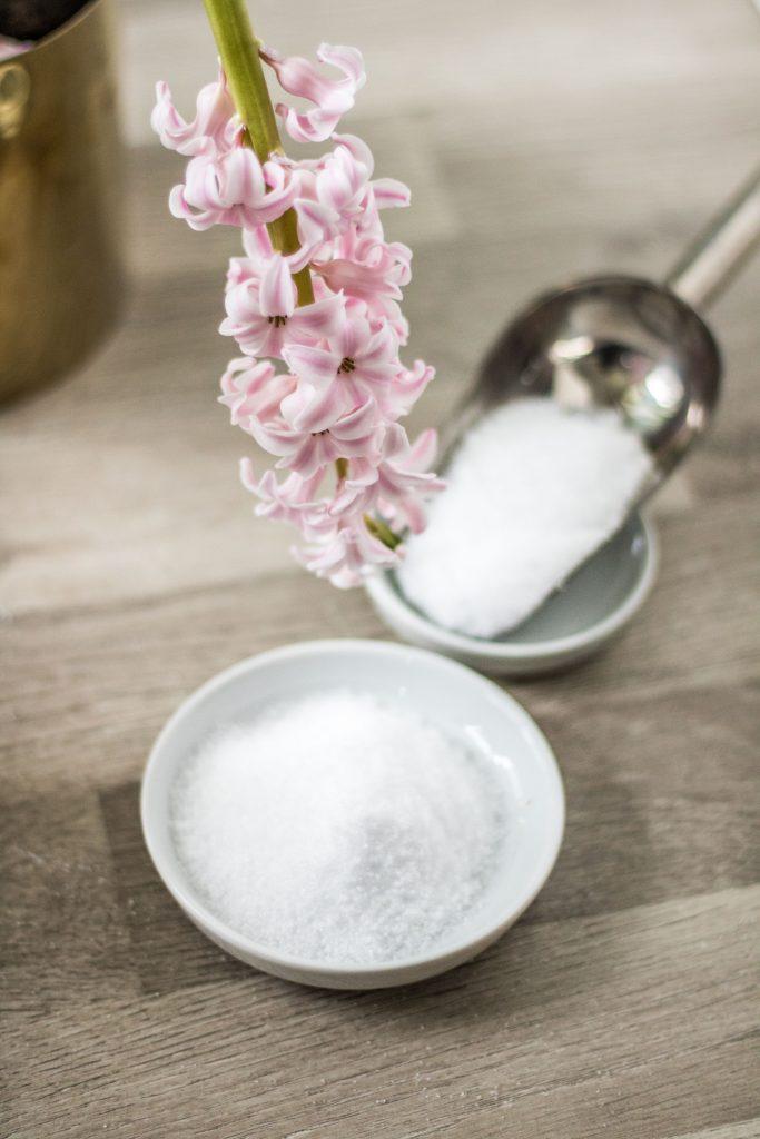 Xylit und Erythrit - Zuckeralkohole